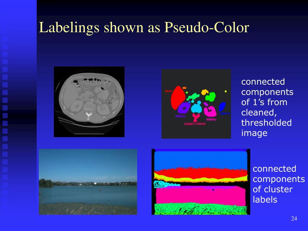 Labelings shown as Pseudo-Color