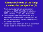 adenocarcinoma of the lung a molecular perspective 2