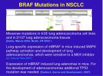 braf mutations in nsclc