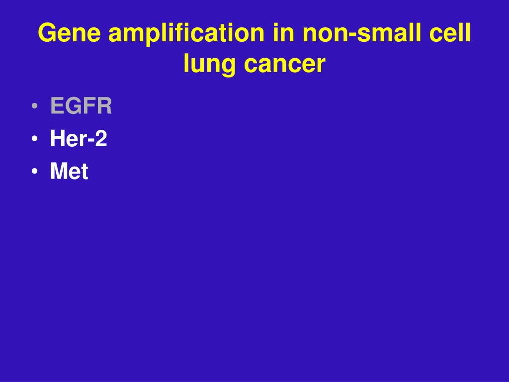 Gene amplification in non-small cell lung cancer