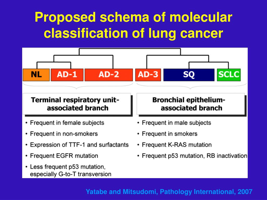 Proposed schema of molecular classification of lung cancer