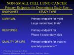 non small cell lung cancer primary endpoints for determining study size