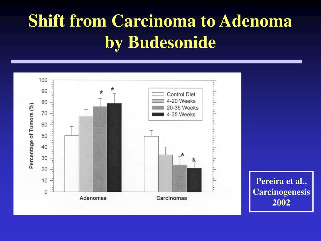 Shift from Carcinoma to Adenoma by Budesonide