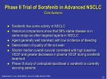 phase ii trial of sorafenib in advanced nsclc conclusions