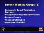 summit working groups 1