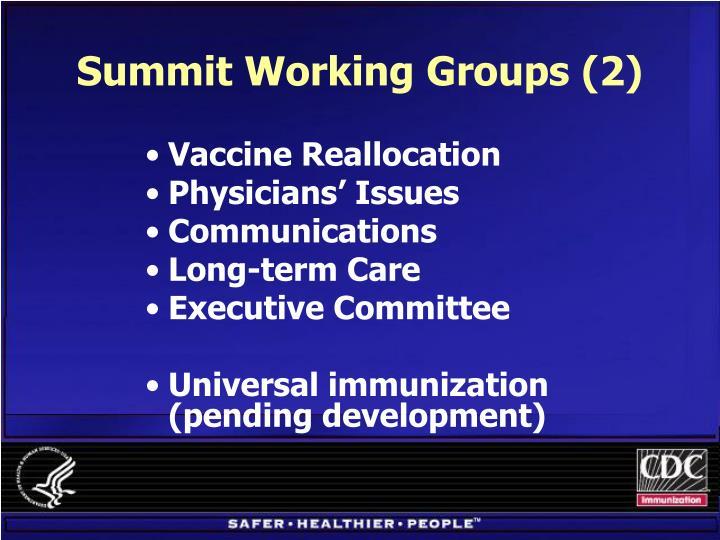 Summit Working Groups (2)