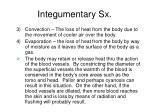 integumentary sx16