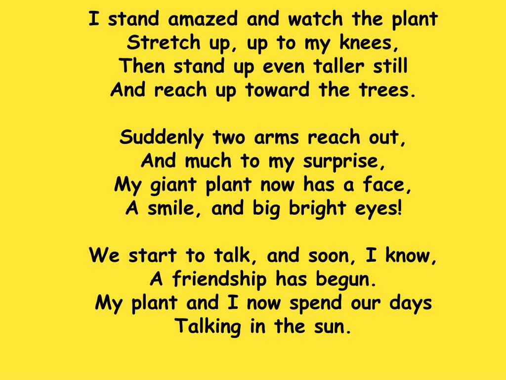 I stand amazed and watch the plant