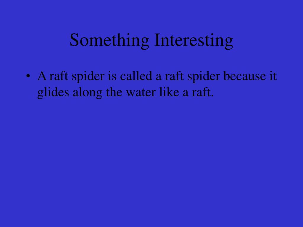 Something Interesting