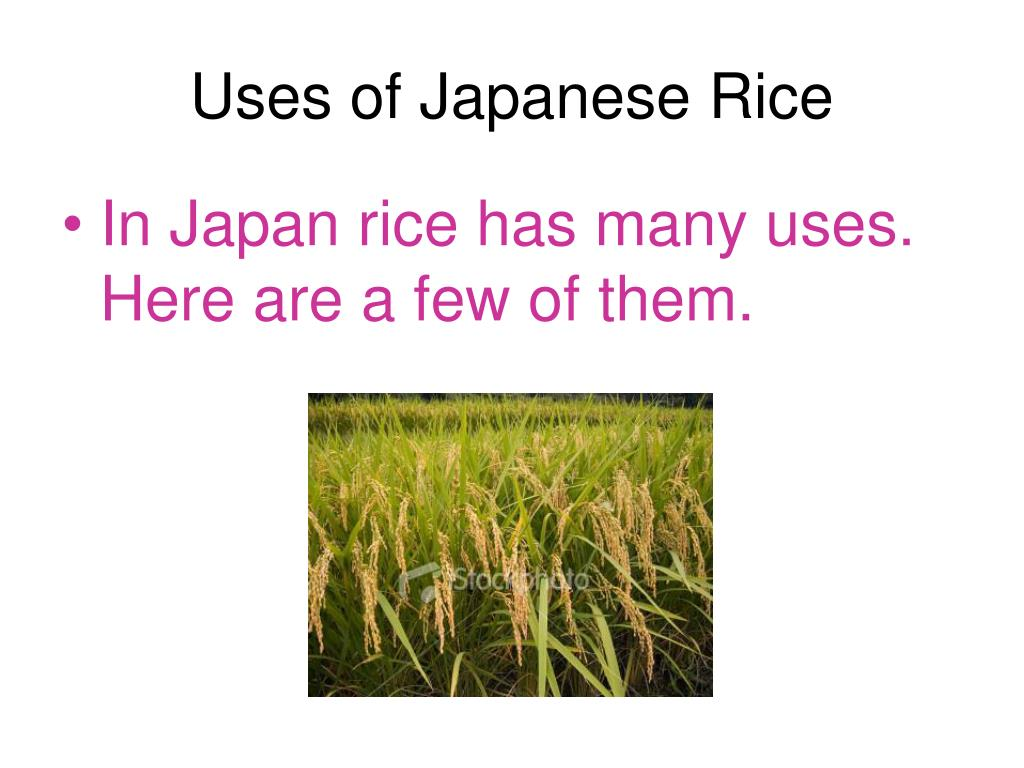 Uses of Japanese Rice