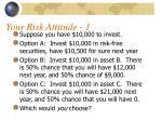 your risk attitude 1