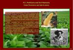 iv 1 fertilizers and soil nutrients6