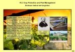 iv 2 crop protection and pest managament