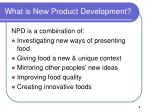 what is new product development
