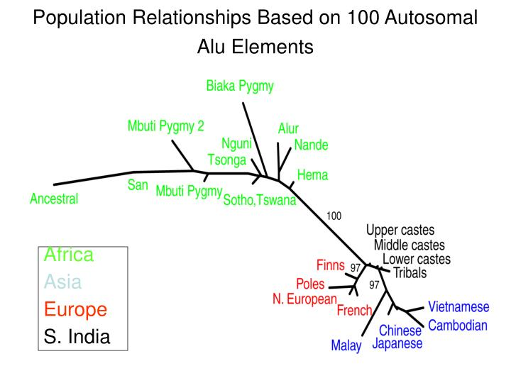 Population Relationships Based on 100 Autosomal Alu Elements
