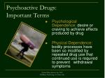 psychoactive drugs important terms25
