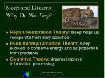 sleep and dreams why do we sleep