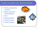 foods involved with salmonellosis
