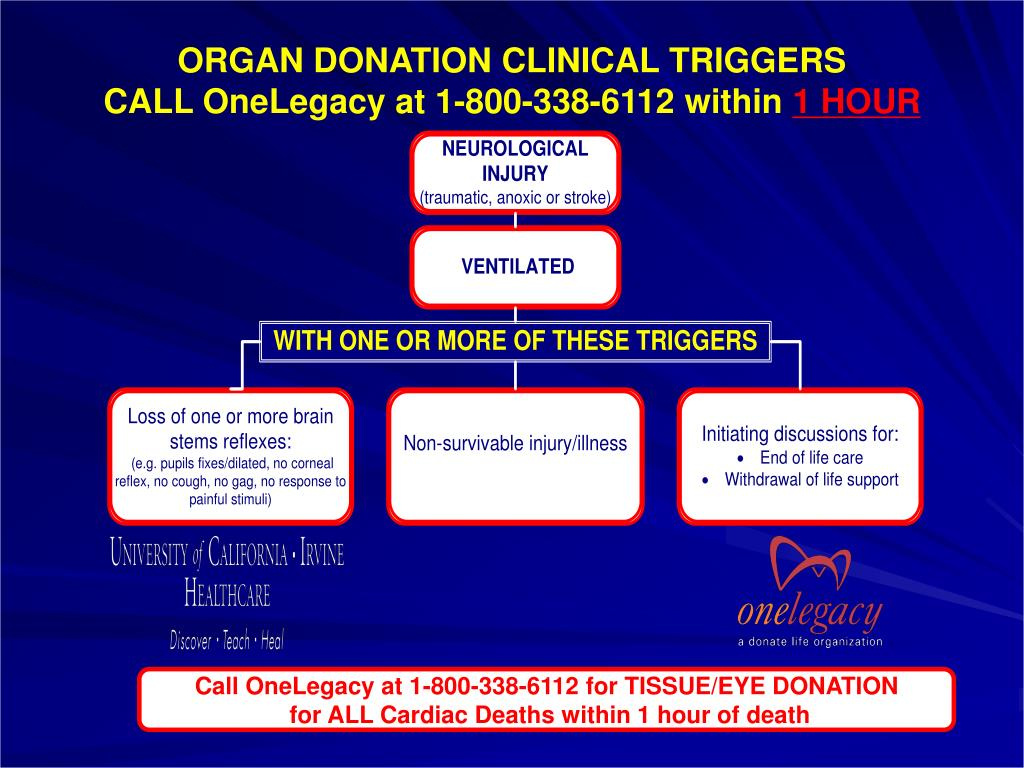 ORGAN DONATION CLINICAL TRIGGERS