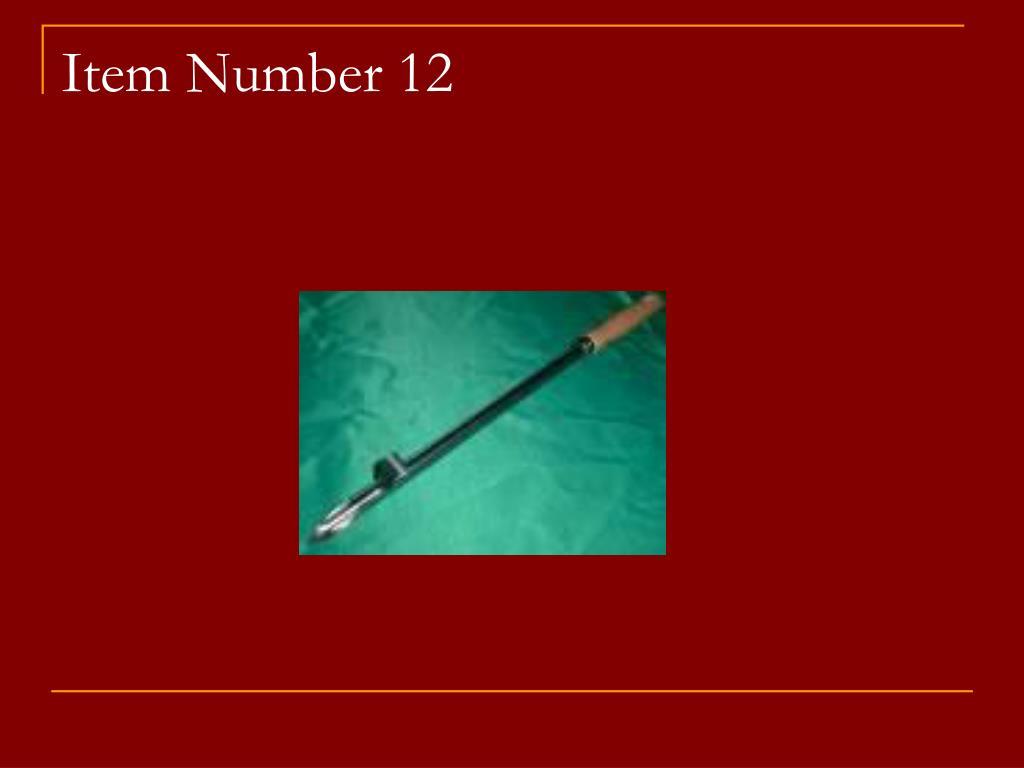 Item Number 12