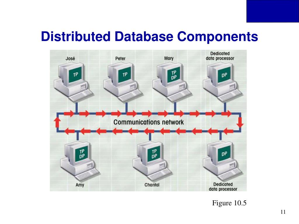 Distributed Database Components