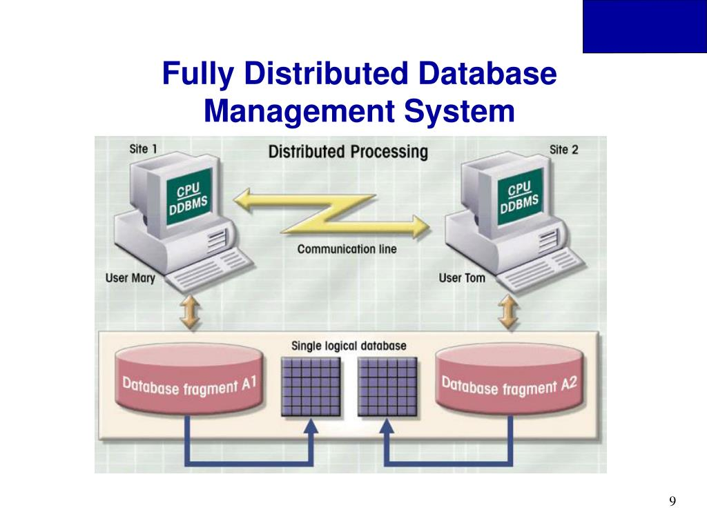 Fully Distributed Database Management System