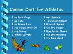 canine diet for athletes