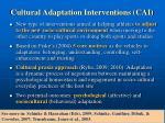 cultural adaptation interventions cai
