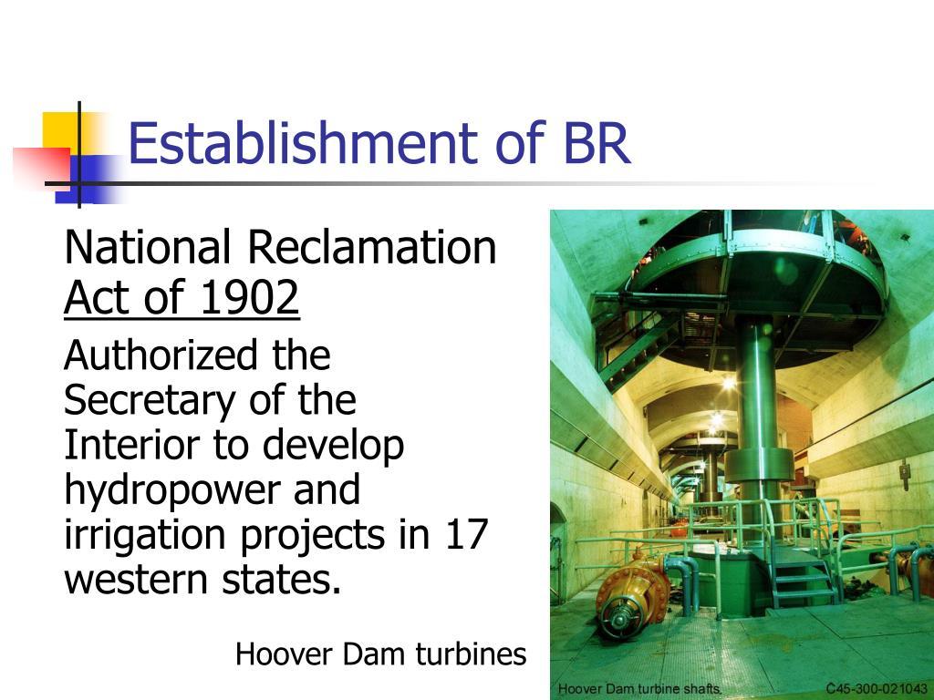 Establishment of BR