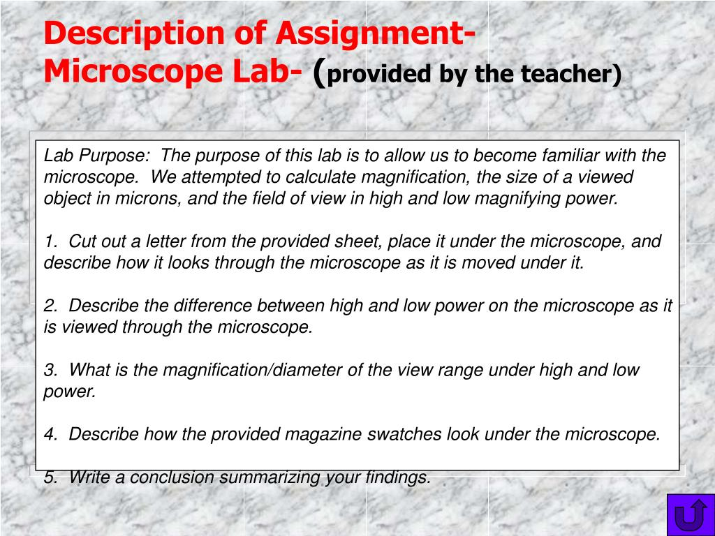 Description of Assignment- Microscope Lab-
