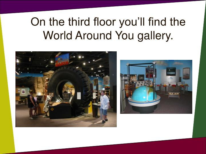 On the third floor you'll find the World Around You gallery.