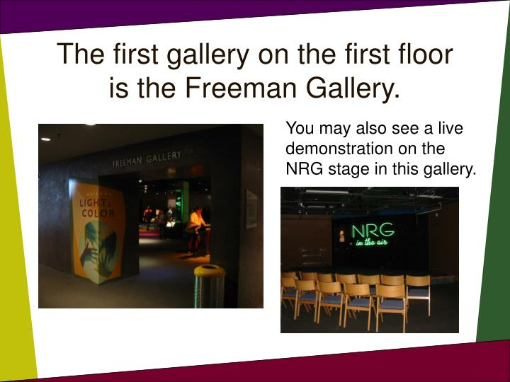 The first gallery on the first floor is the Freeman Gallery.