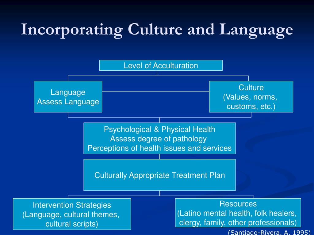 Incorporating Culture and Language