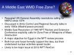 a middle east wmd free zone