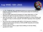 iraqi wmd 1991 2003