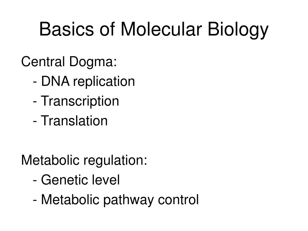 basics of molecular biology l.