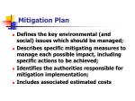 mitigation plan