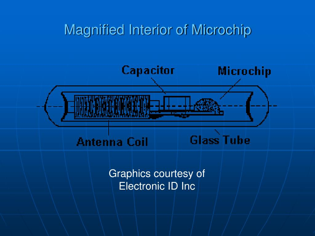 Magnified Interior of Microchip