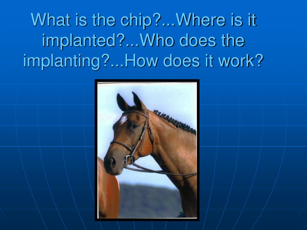 What is the chip?...Where is it implanted?...Who does the implanting?...How does it work?