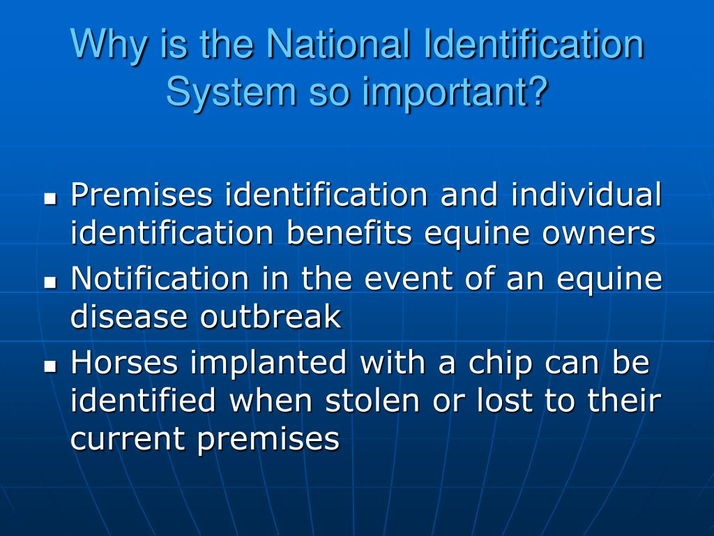 Why is the National Identification System so important?