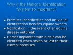why is the national identification system so important