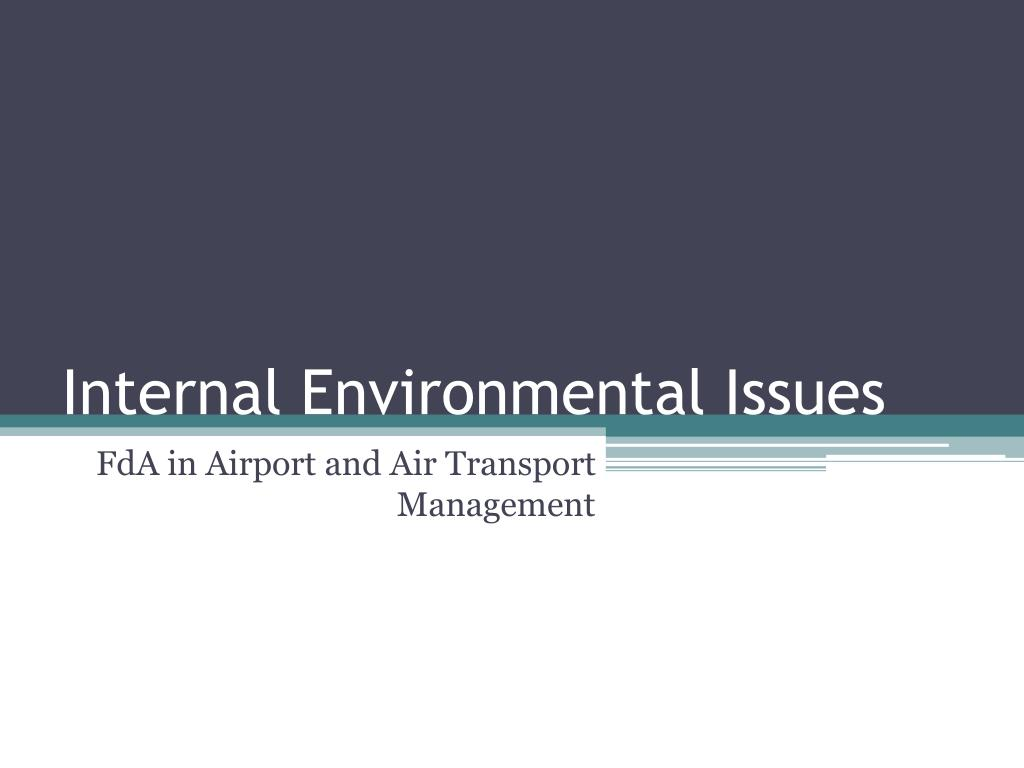 internal environmental issues l.