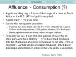 affluence consumption
