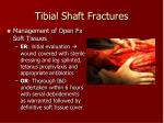 tibial shaft fractures42