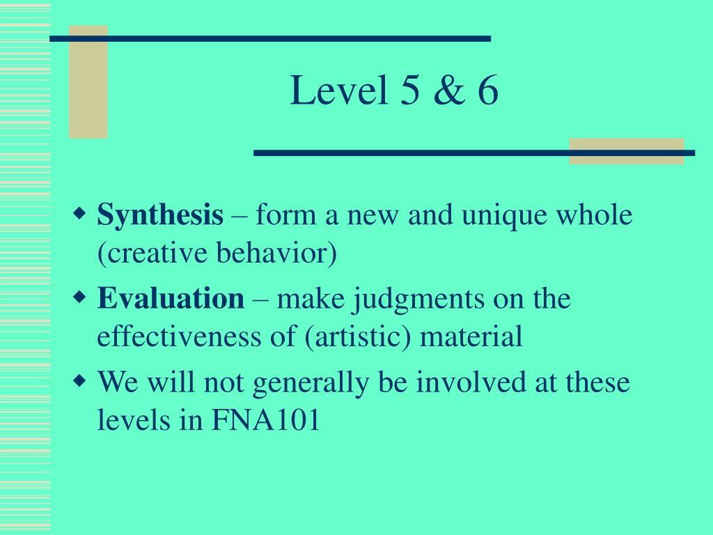Level 5 & 6