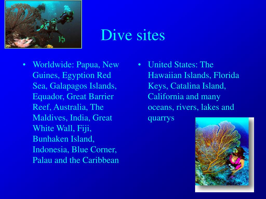 Worldwide: Papua, New Guines, Egyption Red Sea, Galapagos Islands, Equador, Great Barrier Reef, Australia, The Maldives, India, Great White Wall, Fiji, Bunhaken Island, Indonesia, Blue Corner, Palau and the Caribbean