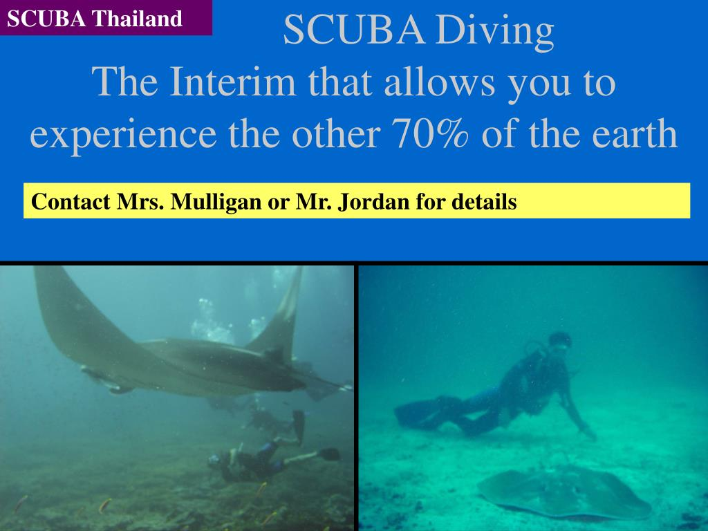 scuba diving the interim that allows you to experience the other 70 of the earth l.