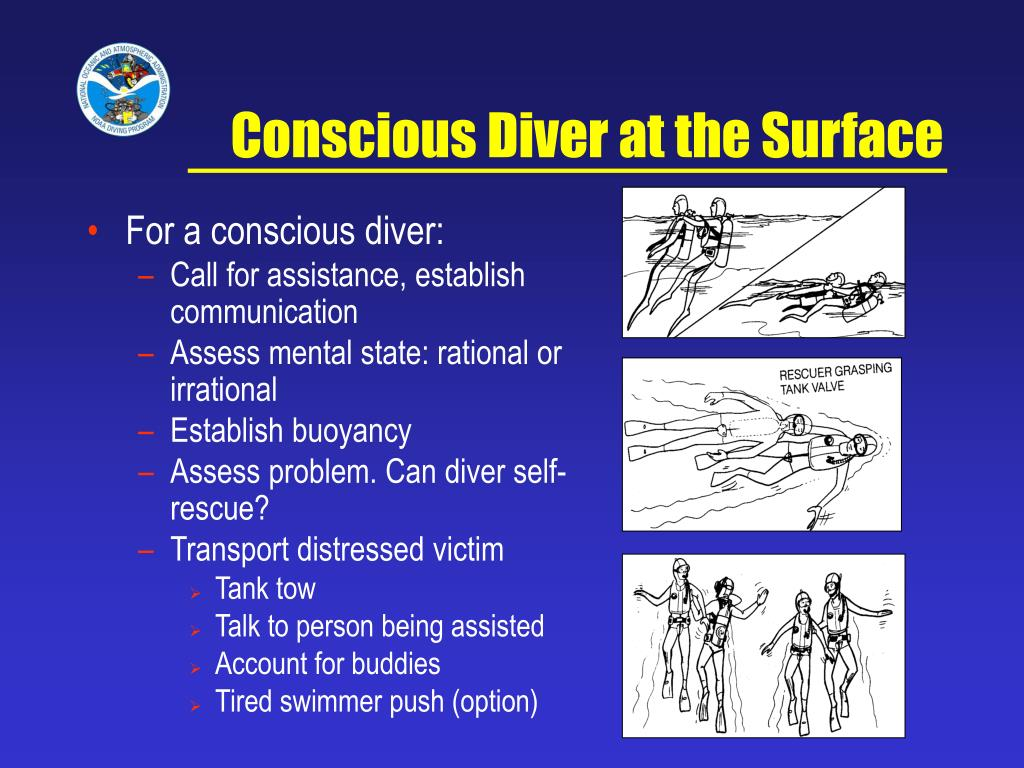 Conscious Diver at the Surface