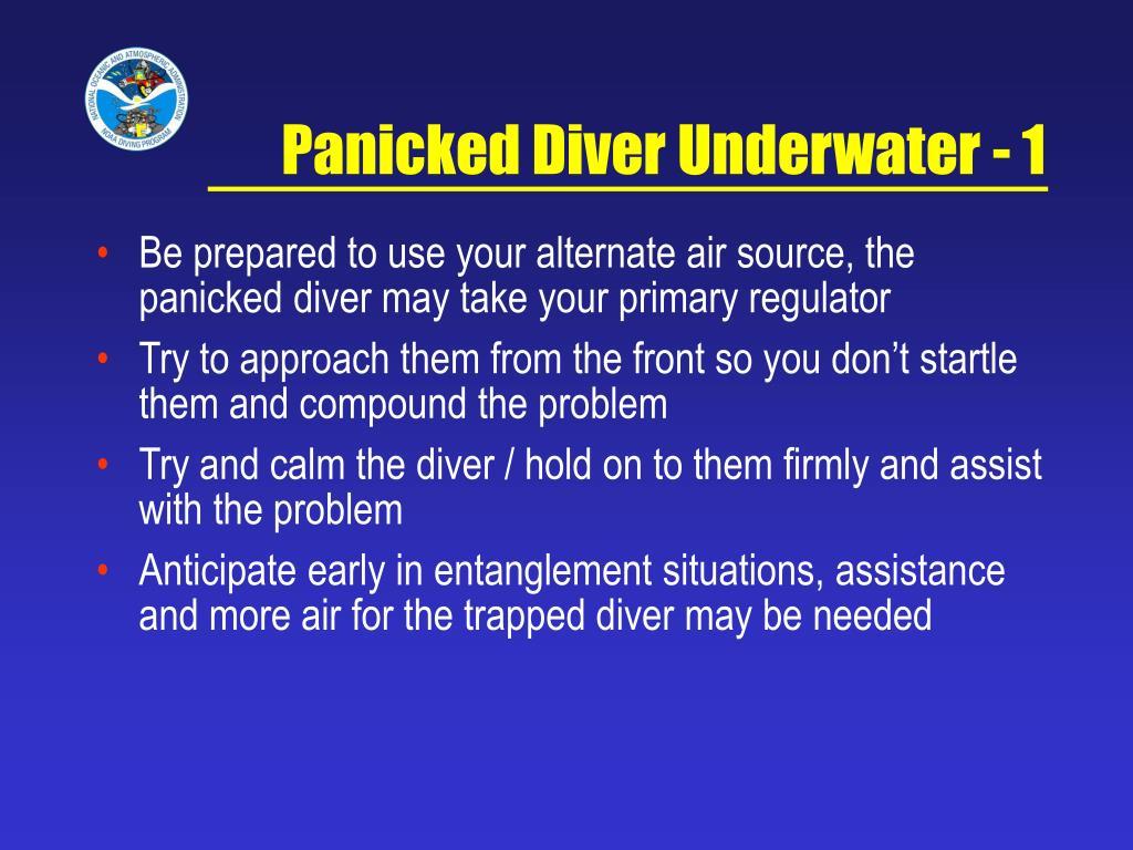 Panicked Diver Underwater - 1