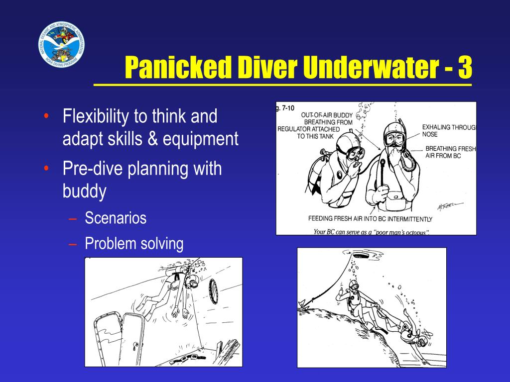 Panicked Diver Underwater - 3